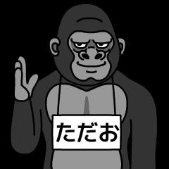 tadao is gorilla