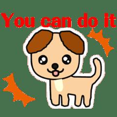 犬 English phrases  / adjectives 形容詞