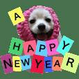【Xmas〜新年】宴会〜挨拶ポメヒナちゃん