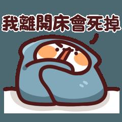 LV.28 野生喵喵怪 (內有被被)