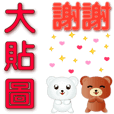 Cute bear practical every day every year