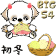 【Big】シーズー54『初冬』