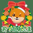 柴犬「ムサシ」16 クリスマス