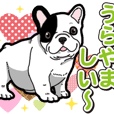 Wanko-Biyori Puppy of French Bulldog 2