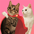 SoybeanMilk & JunRon Cat 1