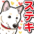 Wanko-Biyori White Shiba Inu 6
