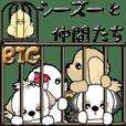 【Big】シーズー犬と仲間たち
