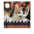 三毛猫クラとステラ 2
