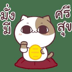 Tofu cat Dukdik 3