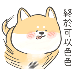 柴犬歐弟 1 色色柴柴篇
