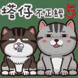 塔仔不正经 part.5