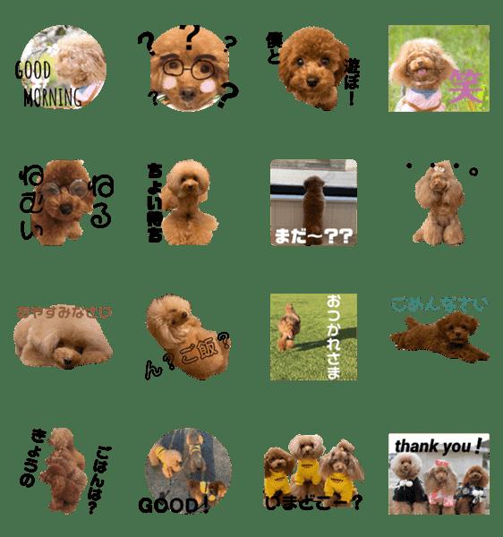「ウチの愛犬 第一弾」のLINEスタンプ一覧