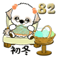 シーズー犬 82『初冬』