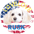 RUSK stickers