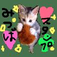 MiTSUBA Minohara vol.01