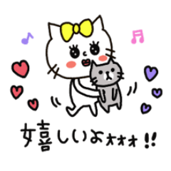 Daily life and event of the cat