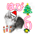 Christmas & Happy New Year with cats.