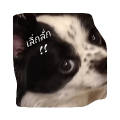 P_20211025012625