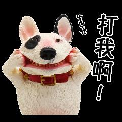 朝隈俊男のAnimal Life-動物說說話