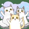 3 cats family