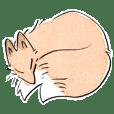 A Soft Fox