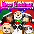 Cute dog's Christmas