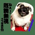 ぶさパグ犬ゆきちの 腹ぺこスタンプ6
