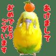 yuzunichi vol.05