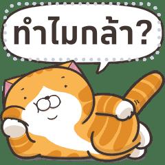 Lan Lan Cat: Message Stickers Part 1