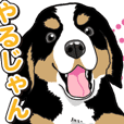 Wanko-Biyori Barneys Mountain Dog