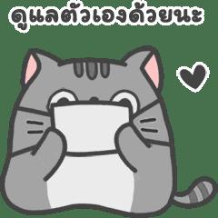SLID CATS Vol.2