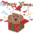 Toy poodle's Christmas