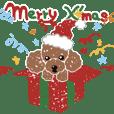 トイ・プードルのクリスマス