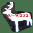 クリスマスのイルミネーション日本語Ver