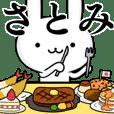 無難に使う☆さとみ☆サトミ☆ウサギ