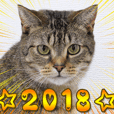 Catcafe RONRON New year Sticker