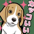 Wanko-Biyori Beagle Puppy 3