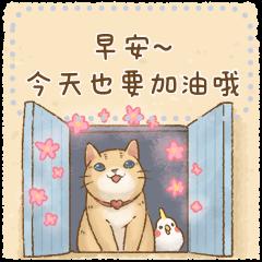 貓咪日和 可愛的訊息貼圖