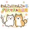 Japanese dog Shiba Inu&white cat winter