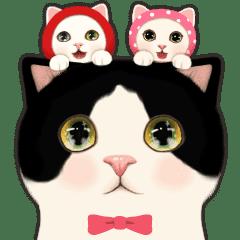 Jetoy甜蜜貓 三重奏
