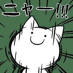 [Intensifies Cat]