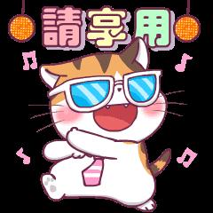 สติ๊กเกอร์ไลน์ Soidow Cat Animated