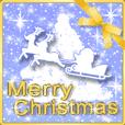 動く☆大人きらめくクリスマス☆