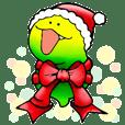 dousdaily-Merry Christmas