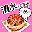 SHIMIZU-Name Special Sticker-