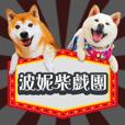 波妮柴戏团 - 快乐日常篇
