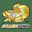 GOLDENBETTA