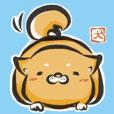"""kanji"" Shiba Inu"
