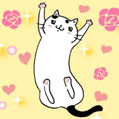 貓小姐Ms.Cat ★ 可愛廢貓大貼圖