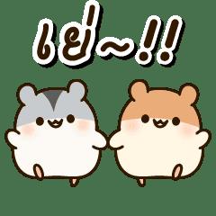 Good Friends Hamster